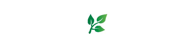 Logo TalThi Alimentaire